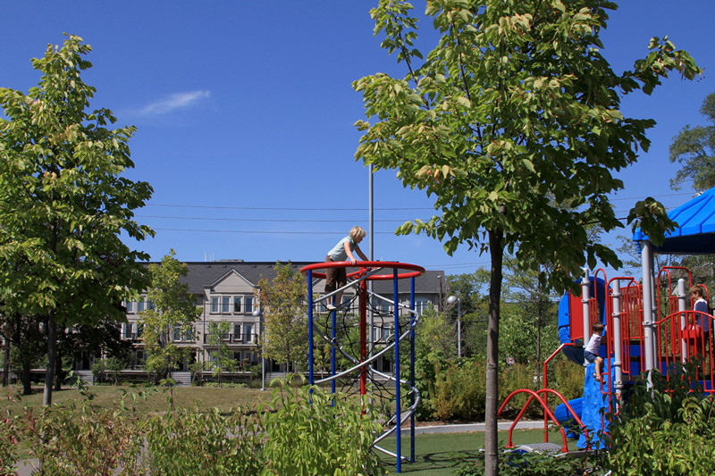 Playground in green environment