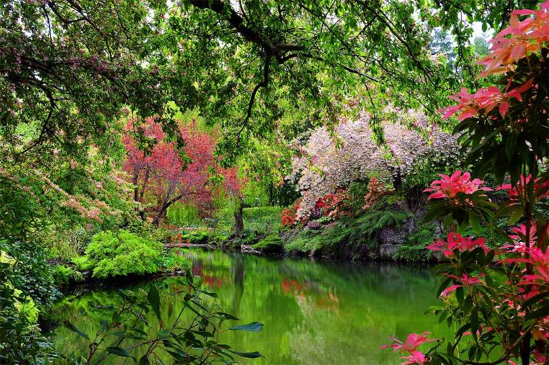 Sunken Garden Lake, Butcharts