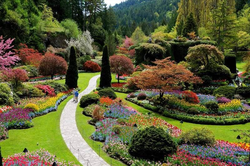 Spring Sunken Garden, Butcharts
