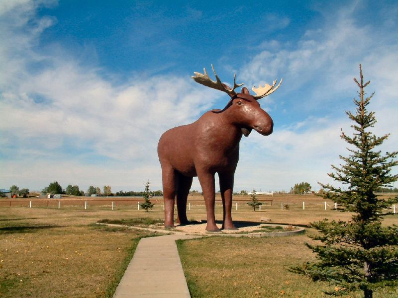 moose_mac